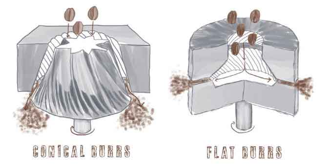 Conical and flat Burr Griner