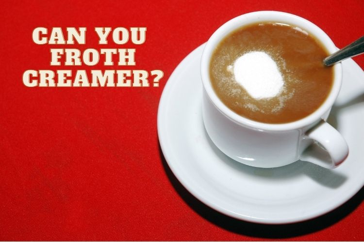 Can you froth creamer