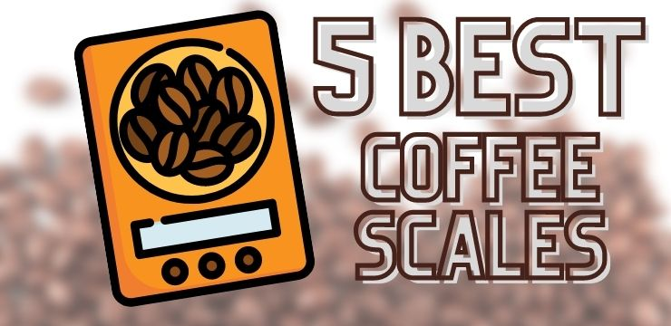 How To Select A Good Quality Coffee Scale